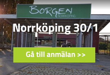 norrköping18