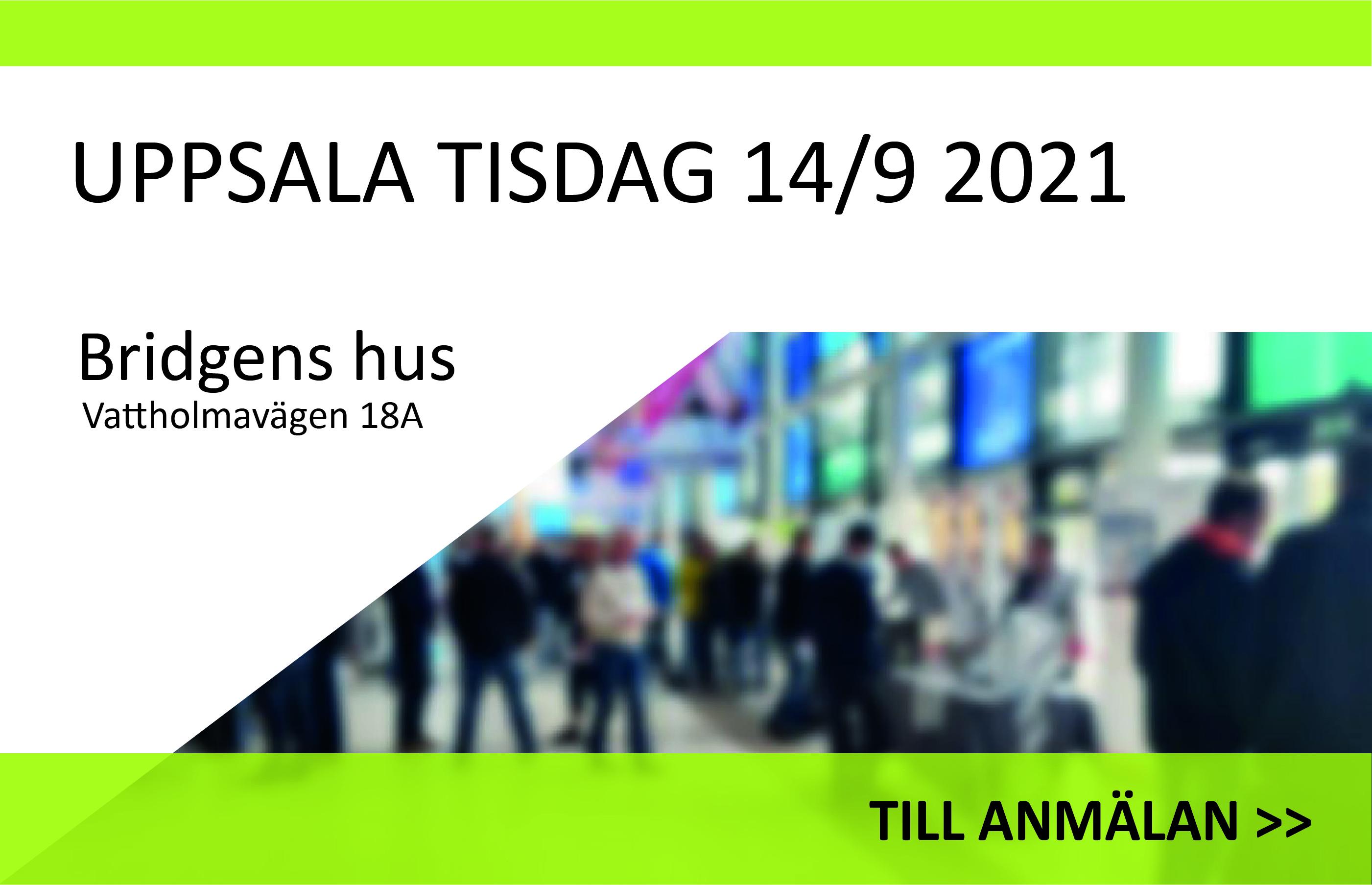 Uppsala-v37_Rityta 1